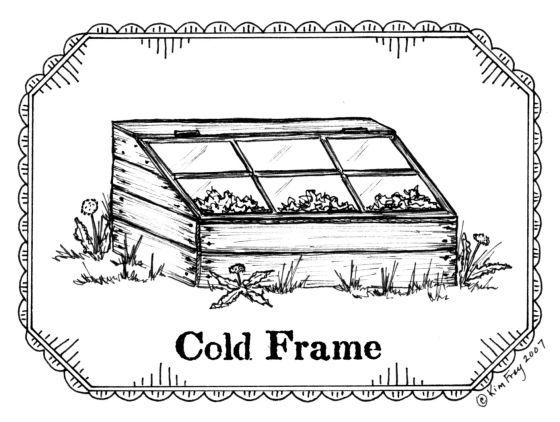 coldframe